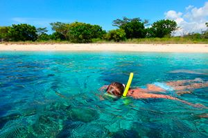 Young-lady-snorkeling-in-a-tropical-sea.jpg