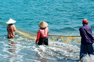 Three-fisherman-work-together-to-pull-in-their-net.jpg
