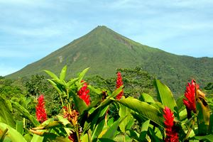 Arenal-Volcano-in-Costa-Rica-with-Red-Flowers.jpg