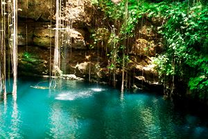Ik-Kil-Cenote,-Chichen-Itza,-Mexico-(jungle).jpg