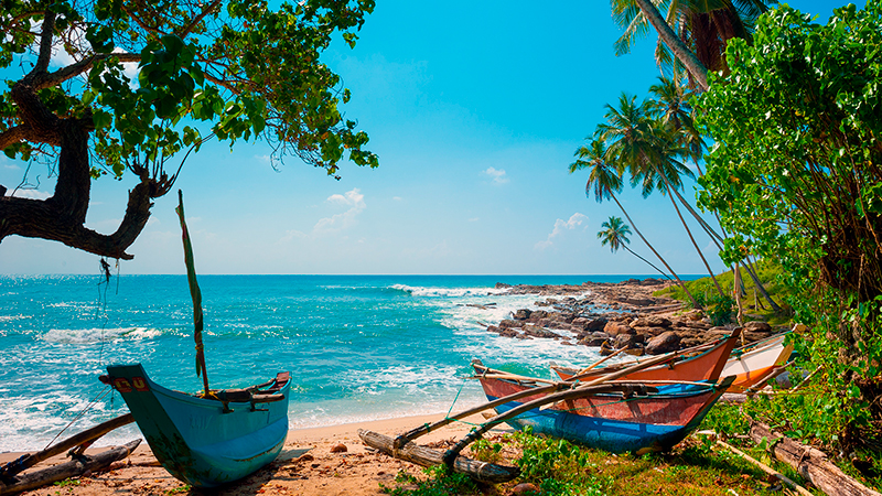 Untouched-tropical-beach-with-palms-and-fishing-boats-in-Sri-Lanka.jpg