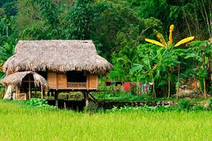Vietnam---rural-scene-on-the-village.jpg