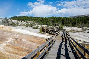 Yellowstone-National-Park---Mammoth-Hot-Springs.jpg