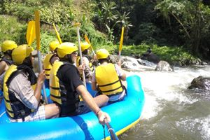 Bali-Indonesia-Ubud-the-Jungle-Wild-water-rafting.jpg