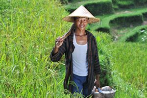 traditional-organic-rice-farmer-with-his-tools-Shoot-on-Bali-island.jpg