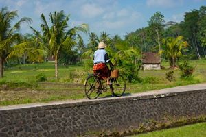 Local-Balinese-women-cycling-along-a-path-past-rice-fields-on-her-rusty-bicycle-.jpg
